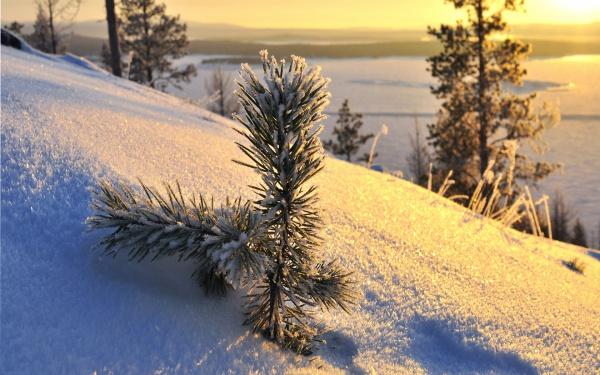 Малюнки зими