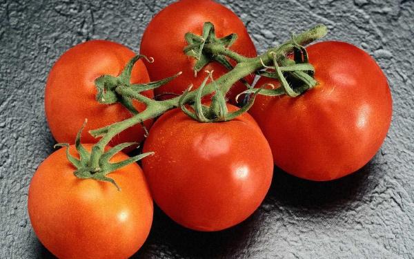 Гілка помідор