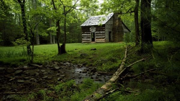 Лісовий будиночок
