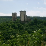 Чевоногородський замок