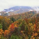 Осінь в горах