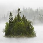 Острів в тумані