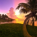 Райський куточок