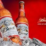 Bud - пиво