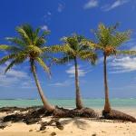 Презентация на тему м ю лермонтов три пальмы - скачать бесплатно.